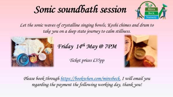 Sonic Soundbath Session