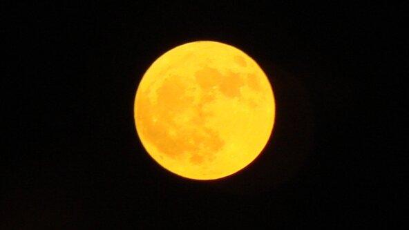 Autumn Moon Festival