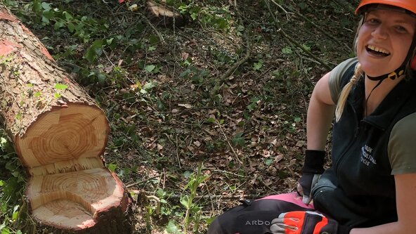 Small Tree Felling Course Including Assessment - unit 203 (Formerly CS31)