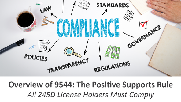 Overview of 9544: The Positive Supports Rule - All 245D License Holders Must Comply - Classroom or Virtual