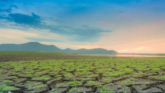 FREE WEBINAR - Adaptation to Climate Change