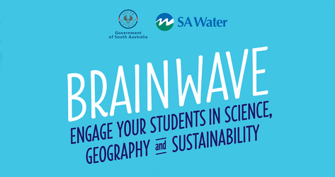 Sa water brainwave logo amended